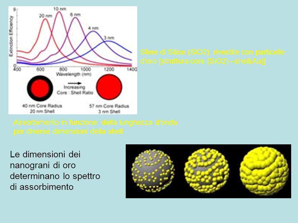 Sfere di Silice (SiO2) rivestite con particelle d'oro [struttura core (SiO2) –shell(Au)]